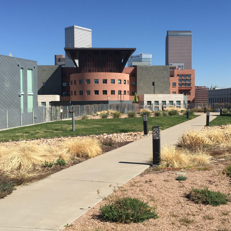 Denver Art Museum: Lifestyle Denver By Gretchen Rosenberg & Libby Levinson>If